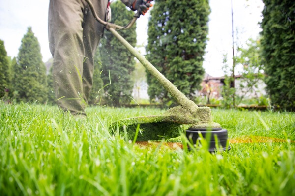landscaping business cash advance