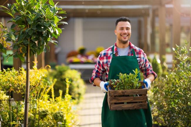 Landscaping Merchant Cash Advance Same Day Funding